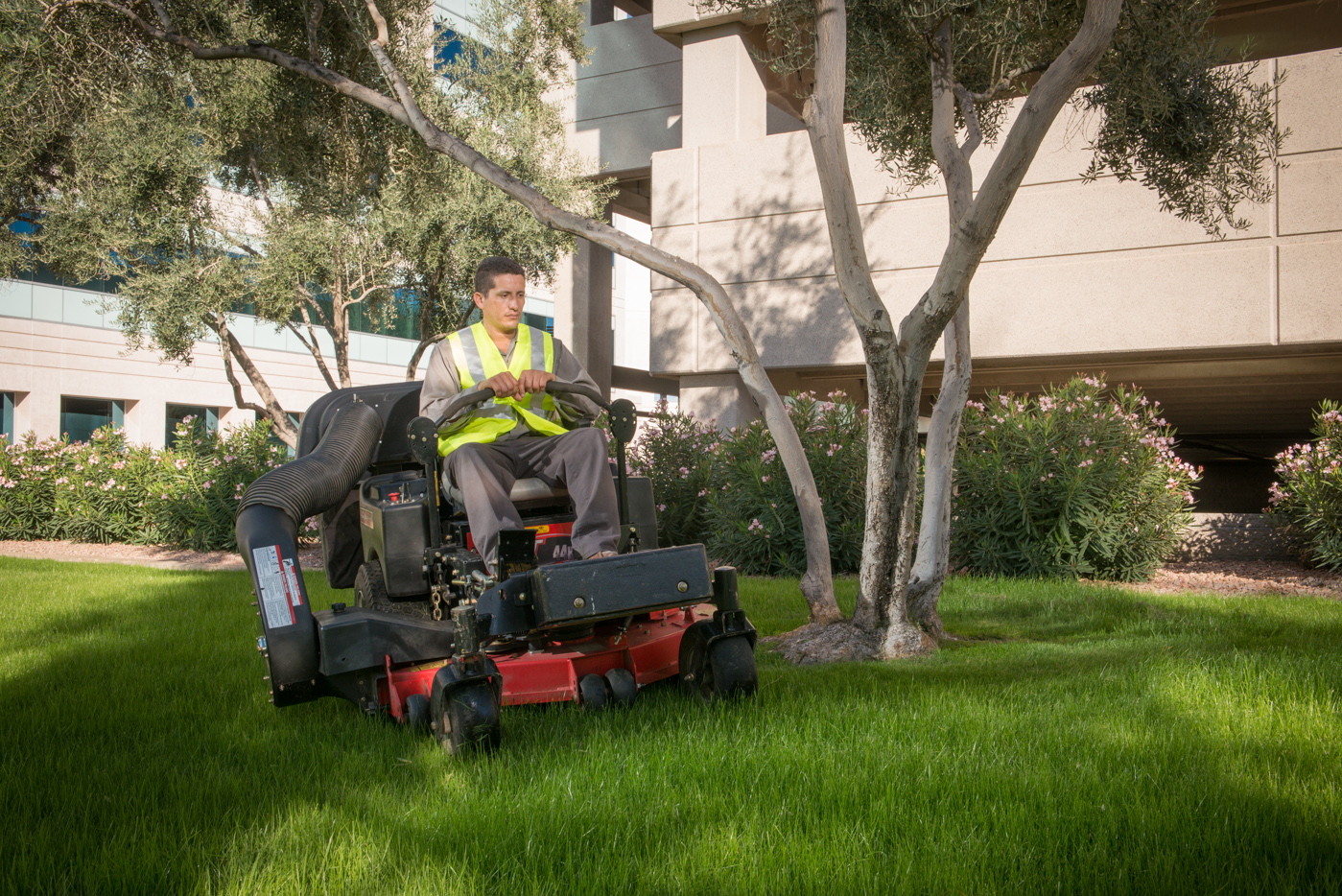 Landscape maintenance at ame landscape companies ame for Lawn maintenance companies