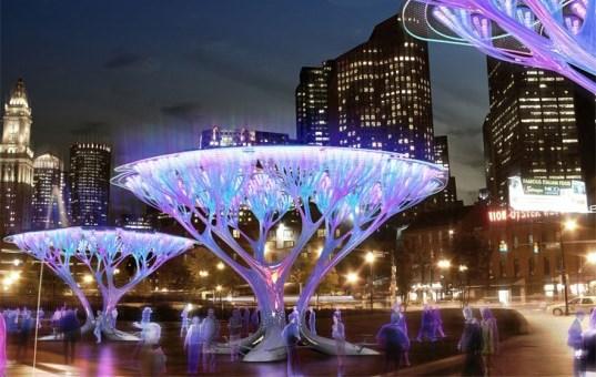 Boston treepods